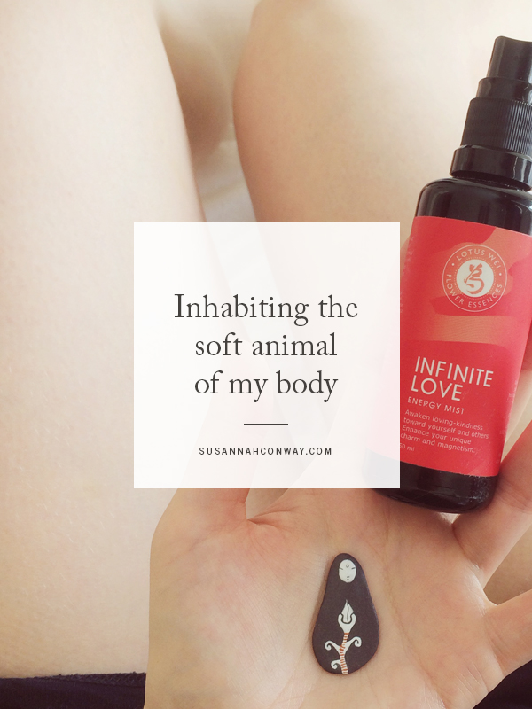 Inhabiting the soft animal of my body | SusannahConway.com