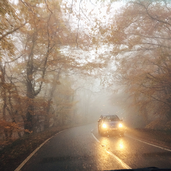 The misty magical road | SusannahConway.com